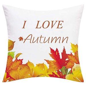 "⭐NEW⭐ - 🍂""I Love Autumn"" Pillow - 18X18"